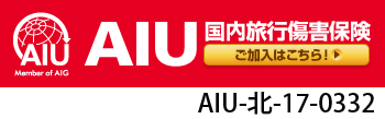 AIUの国内旅行保険